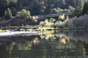 dillon creek