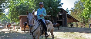 Horse Back Trail Competitions