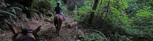 guest ranch riding holidays