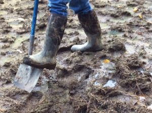 shovel pushing into mud on the ranch