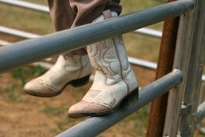 cowboy boot on fence panel