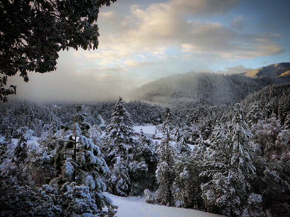 Klamath National Forest In Snow