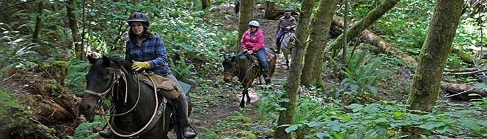 Marble Mountain Ranch Riding